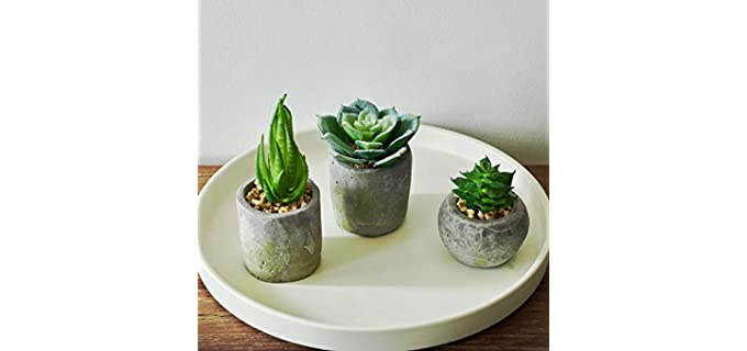 MOTINI faux - Succulent Shower Plants